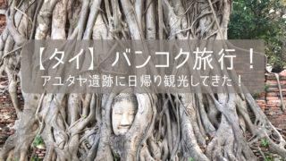 【タイ】バンコク旅行!アユタヤ遺跡に日帰り観光してきた!