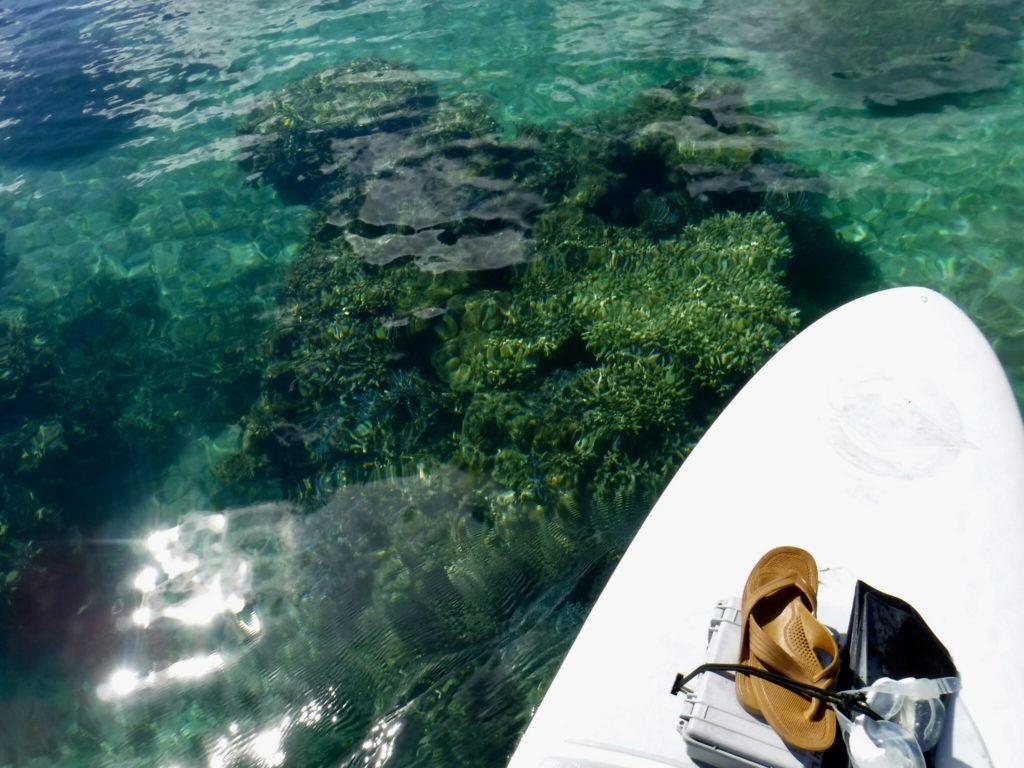 川平湾をSUPで周遊しながらシュノーケリングを楽しむアクティビティ10